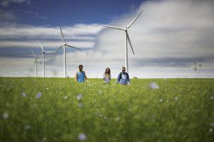 champs de lin et éoliennes