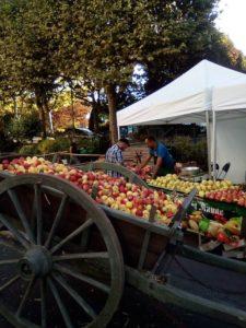 pommes à cidre, terroir