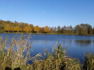 espace-loisirs-de-liton lac