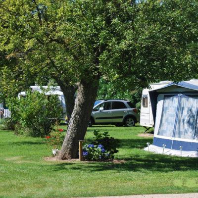 emplacement camping caravane ombragé
